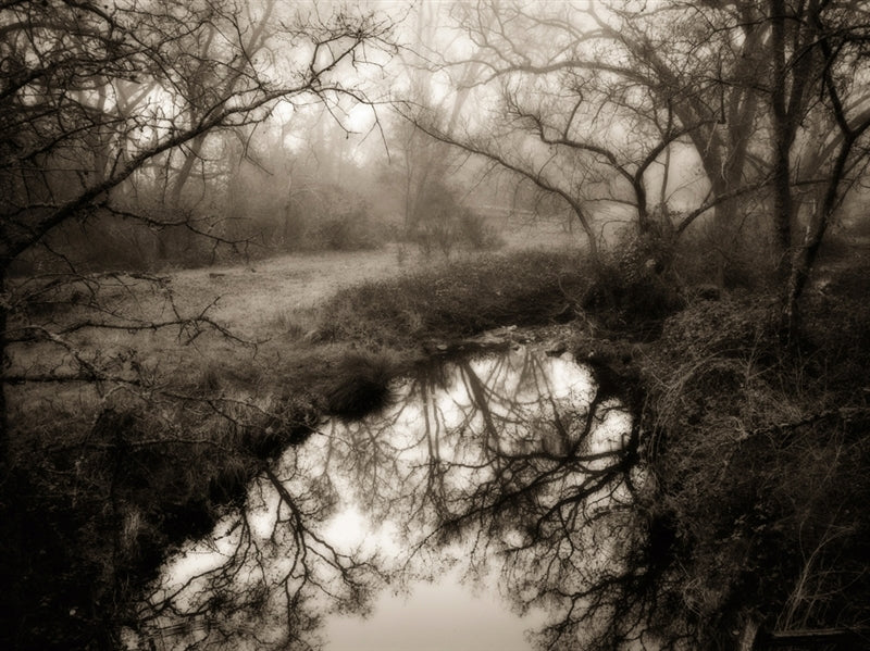 Pond, near Shingle Springs, California by Kerik Kouklis-Ansel Adams Gallery