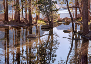 Spring Pool, First Light, Tenaya Lake