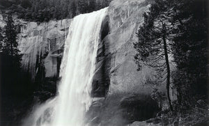 Vernal Fall and Tree, 1995