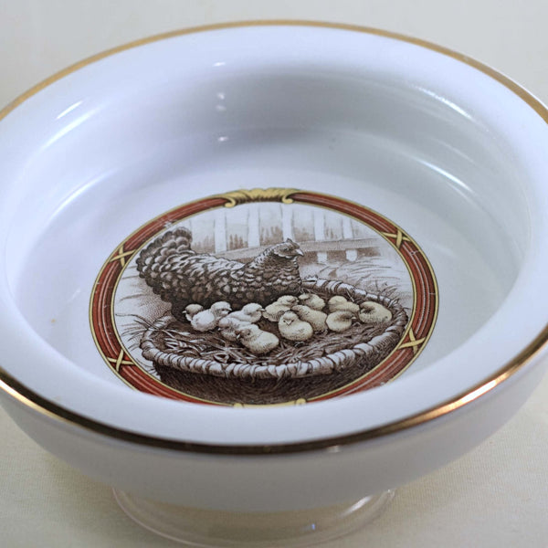 HARKER POTTERY CHILD PORRIDGE BOWL Illustrated with Hen Nesting with Baby Chicks Circa 1895