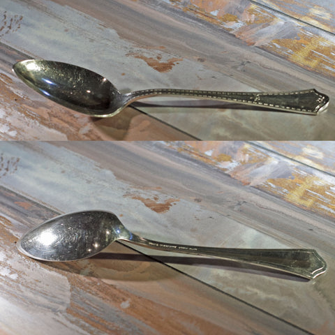 CHATAUQUA SILVER PLATE SERVING SPOON by Oneida Silver