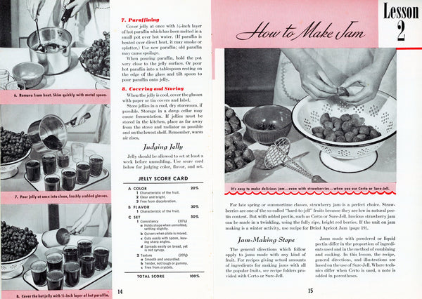 "WHAT MAKES JELLY ""JELL""? Vintage Recipe Booklet Published by General Foods Corporation ©1945"