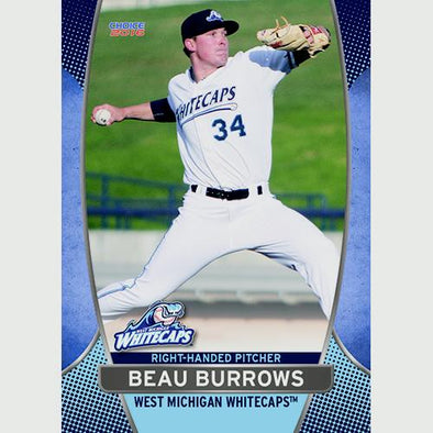 West Michigan Whitecaps 2016 Team Card Set