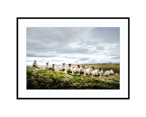 Baaand of BrothersPhotograph Print Landscape Photography Wall Art by Danscape