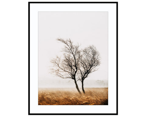 ClaspingPhotograph Print Landscape Photography Wall Art by Danscape