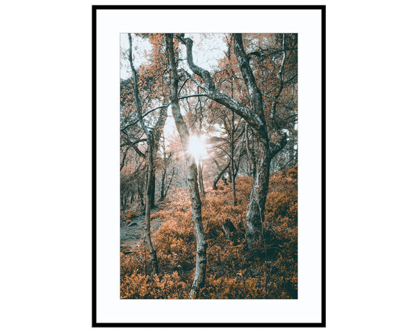 Forest of FirePhotograph Print Landscape Photography Wall Art by Danscape