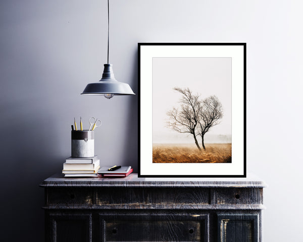 clasping Derbyshire Print, Landscape Photography, Leash Fen Print, Lone Tree Pr Print (Unframed)