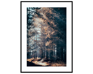 Shimmering SunlightPhotograph Print Landscape Photography Wall Art by Danscape