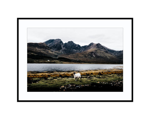 The Sheep and The MountainPhotograph Print Landscape Photography Wall Art by Danscape