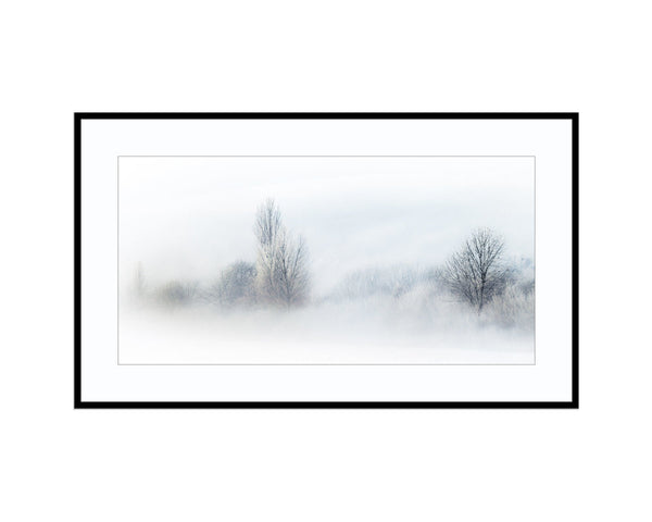 Winter's BrushPhotograph Print Landscape Photography Wall Art by Danscape