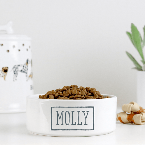 GoodBarks Personalized Pet Bowl