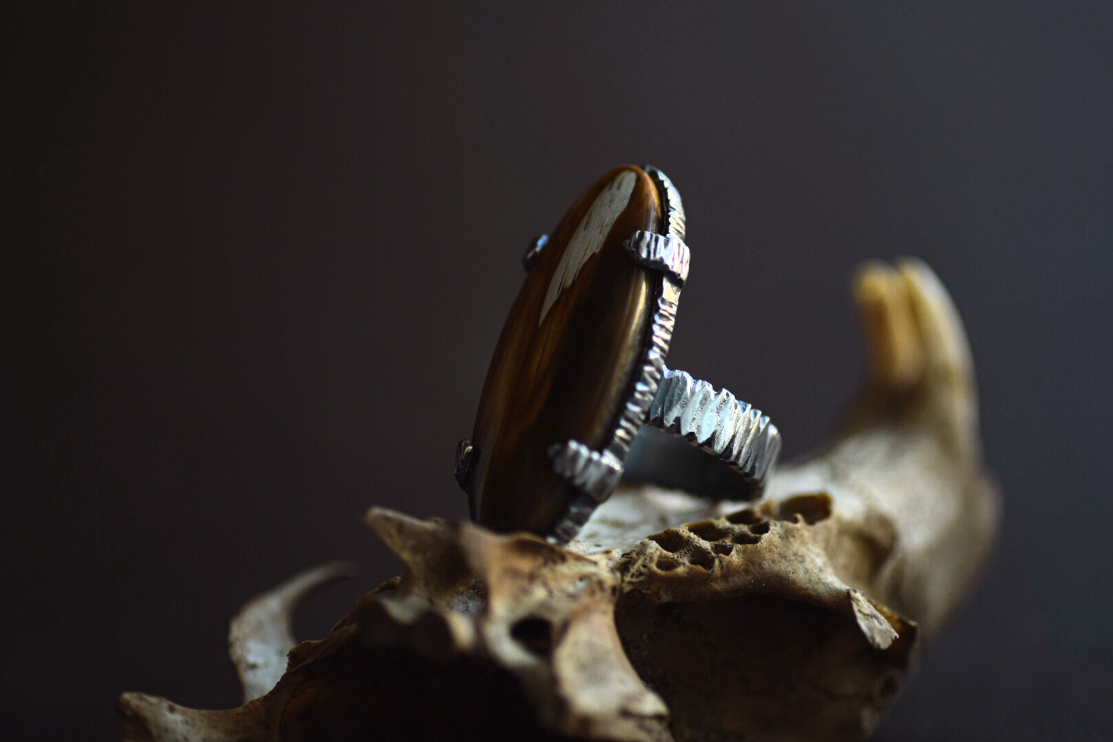 XPetrified Wood Ring - Size 7.5