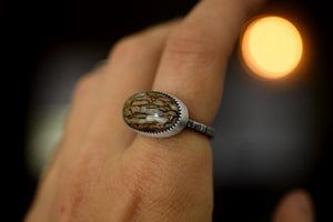 XDinosaur Bone Ring - Fossilized Dino Bone - Sterling Silver Ring - Fossils - Fossil Jewelry