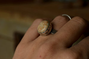 Fossilized Sand Dollar - Fossil Ring - Sterling Silver - Size 7 - Size 8.25