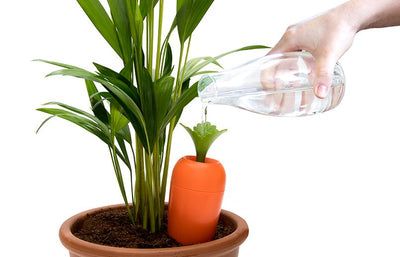 Care-it Self-Watering Device