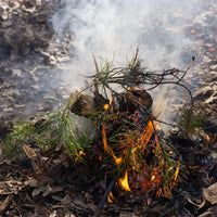 Four Most Useful Fire Starting Methodologies