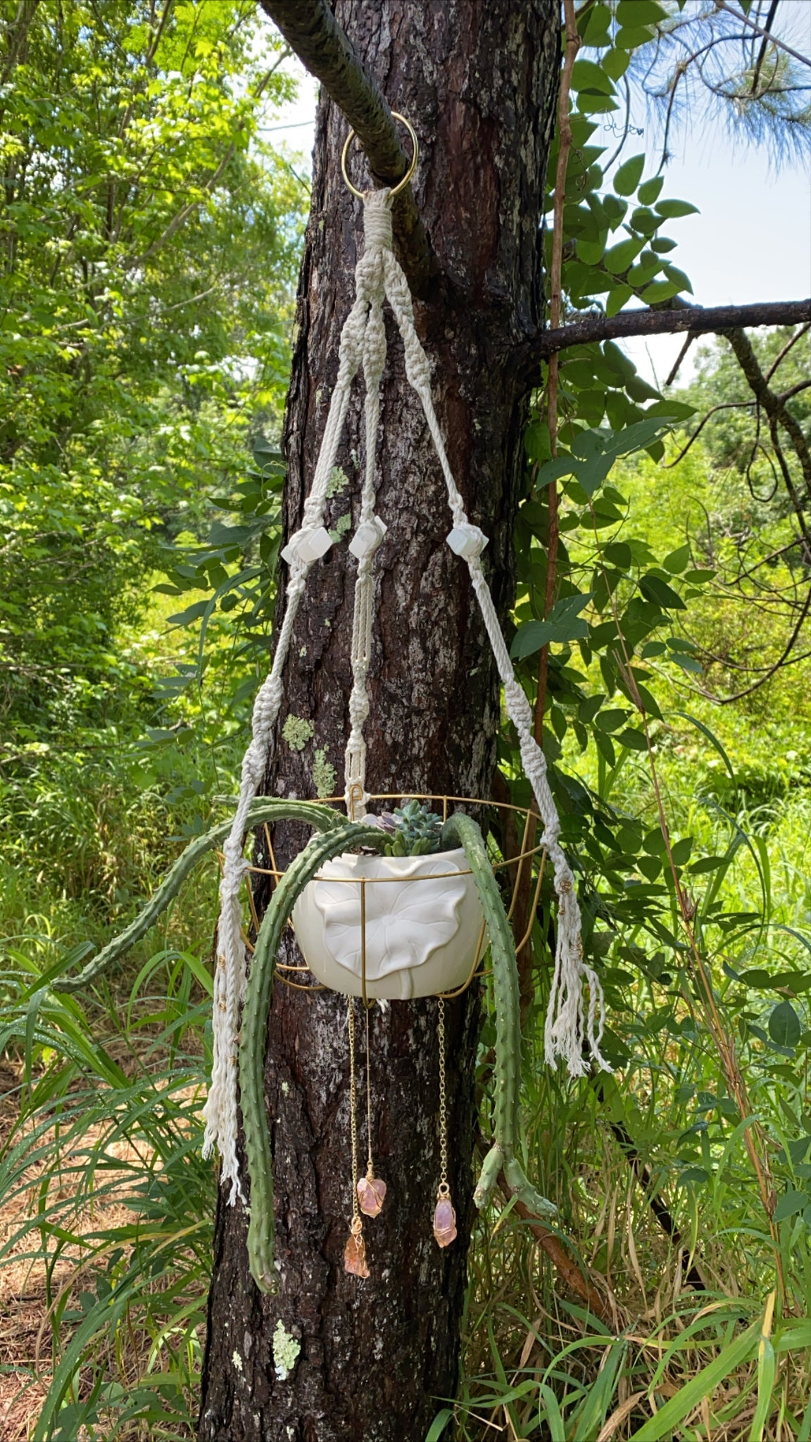 Selenite and Ametrine Enchantress Plant Hanger