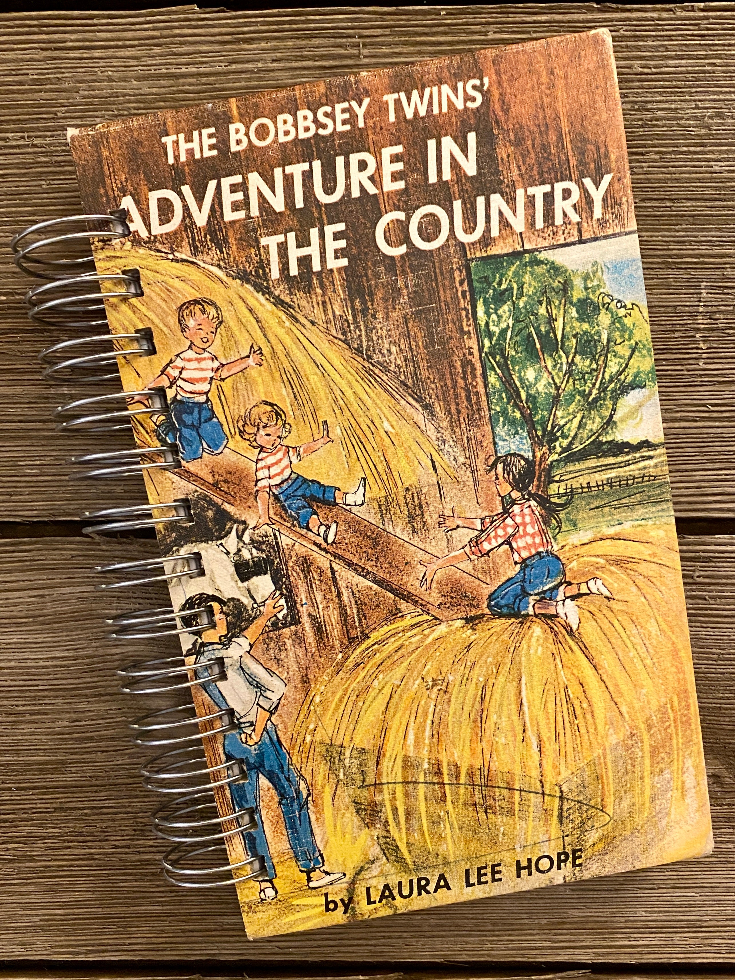 The Bobbsey Twins Adventure in the Country