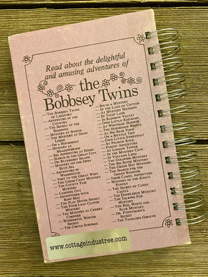 The Bobbsey Twins at Big Bear Pond