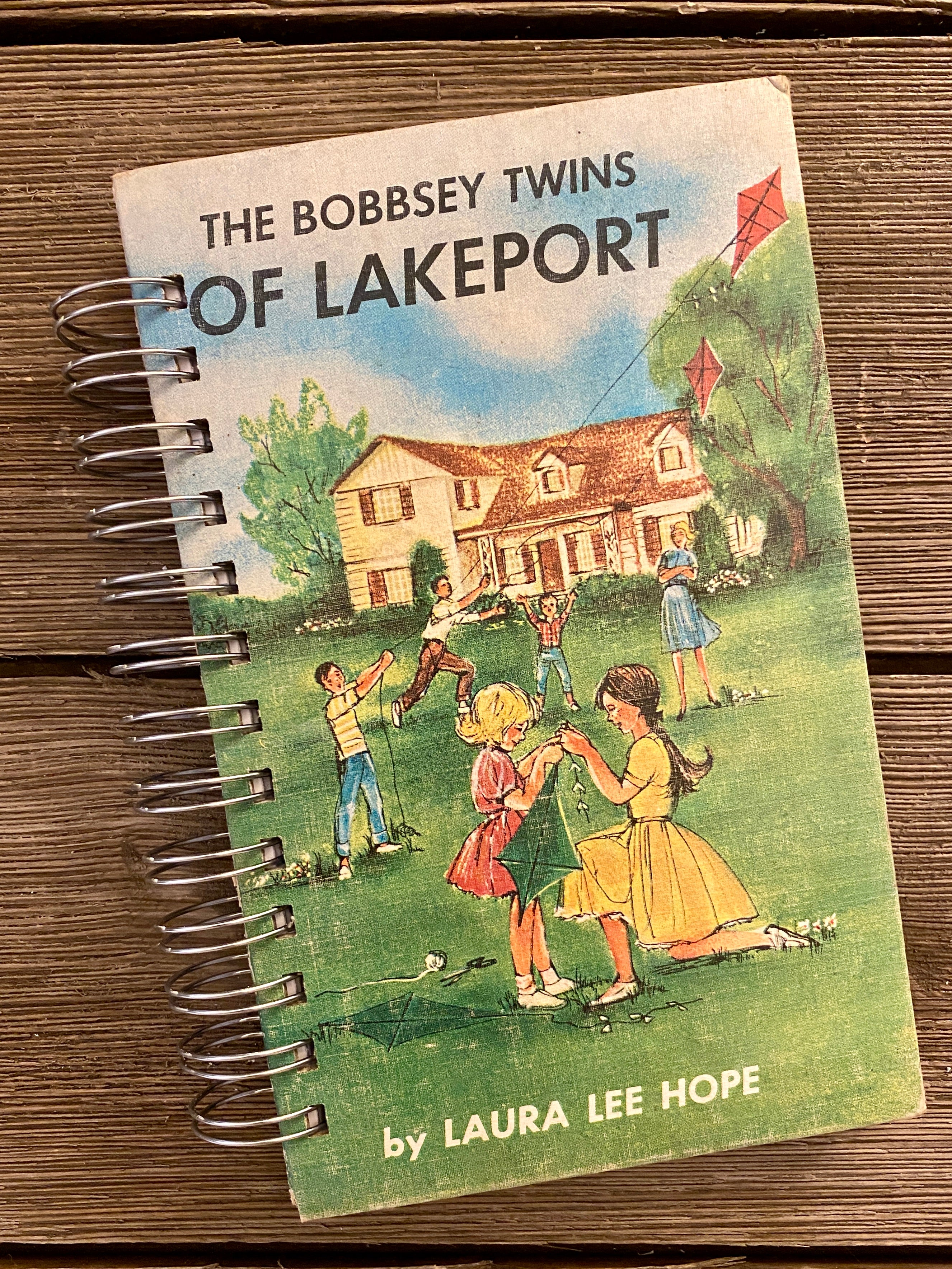 The Bobbsey Twins of Lakeport