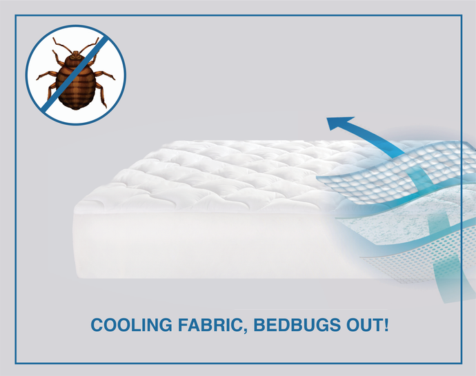 Get Rid Of Bed Bugs And Have Better Sleep & Happier Life