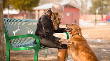 Does Your Dog Have Behavior Problems? Here's What to Do