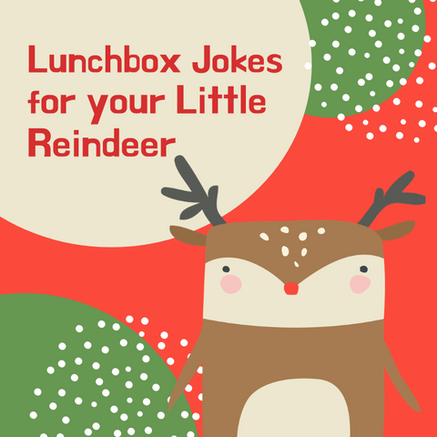 Reindeer Jokes for Kids