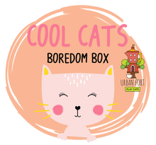 Load image into Gallery viewer, Urban Fort + Rock Paper Sprinkles | Boredom Box: Cool Cats