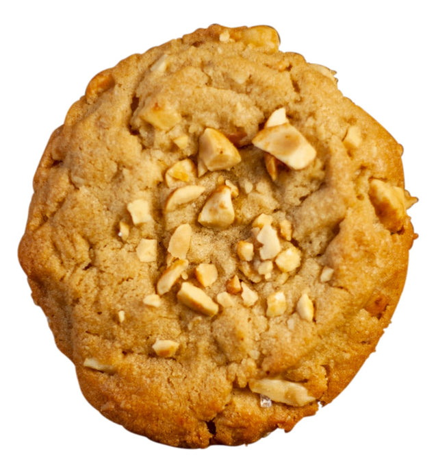 single peanut butter cookie
