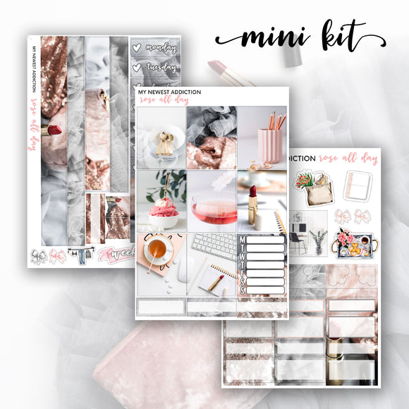 Rosé All Day Mini Kit