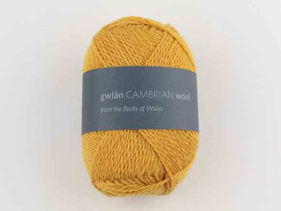 Cambrian Wool 4-ply