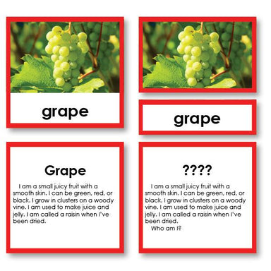"Botany-Plant Identification - Botany ""Who Am I?"" 3-Part Cards - Fruit"