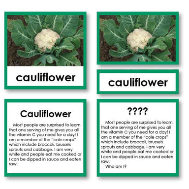 "Botany-Plant Identification - Botany ""Who Am I?"" 3-Part Cards - Vegetable"