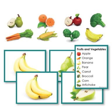 Botany-Plant Identification - Fruits And Vegetables Toddler Cards With Objects