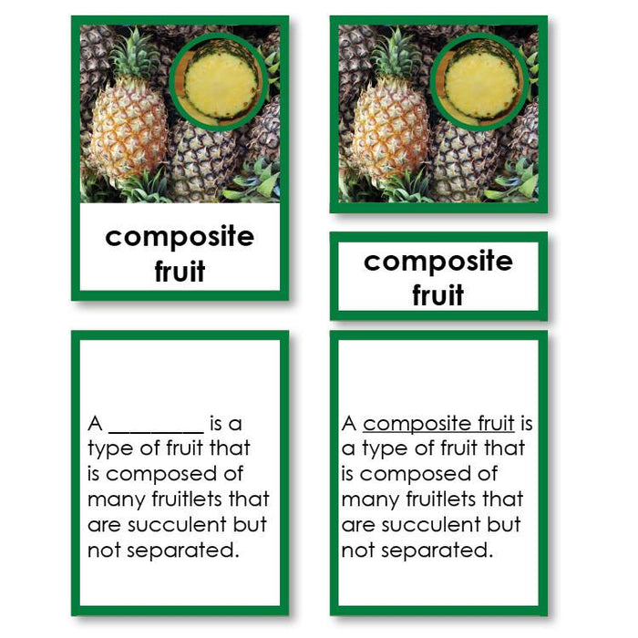 Botany-Types Of Sets - Types Of Fruit 3-Part Cards With Definitions
