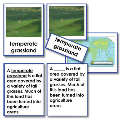 Geography Material-Landforms & Biomes - Biomes 3-Part Cards With Definitions