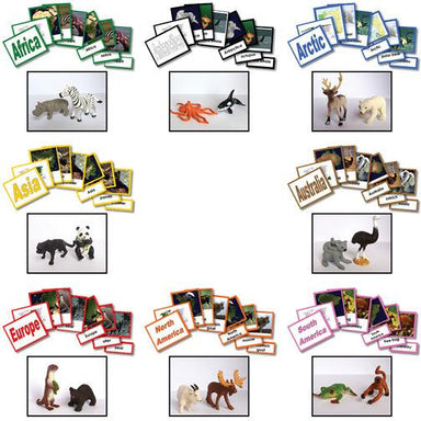 Geography Material-Study Of World Geography - Complete Collection Of 8 Geography Sets 3-Part Cards With Objects
