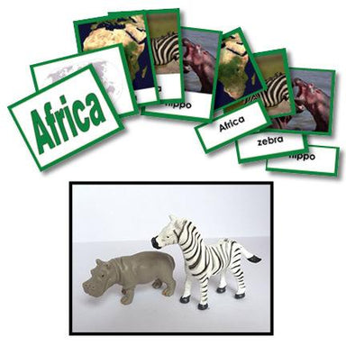 Geography Material-Study Of World Geography - Geography 3-Part Cards With Objects For Africa