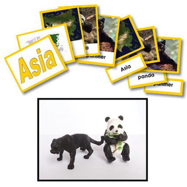 Geography Material-Study Of World Geography - Geography 3-Part Cards With Objects For Asia