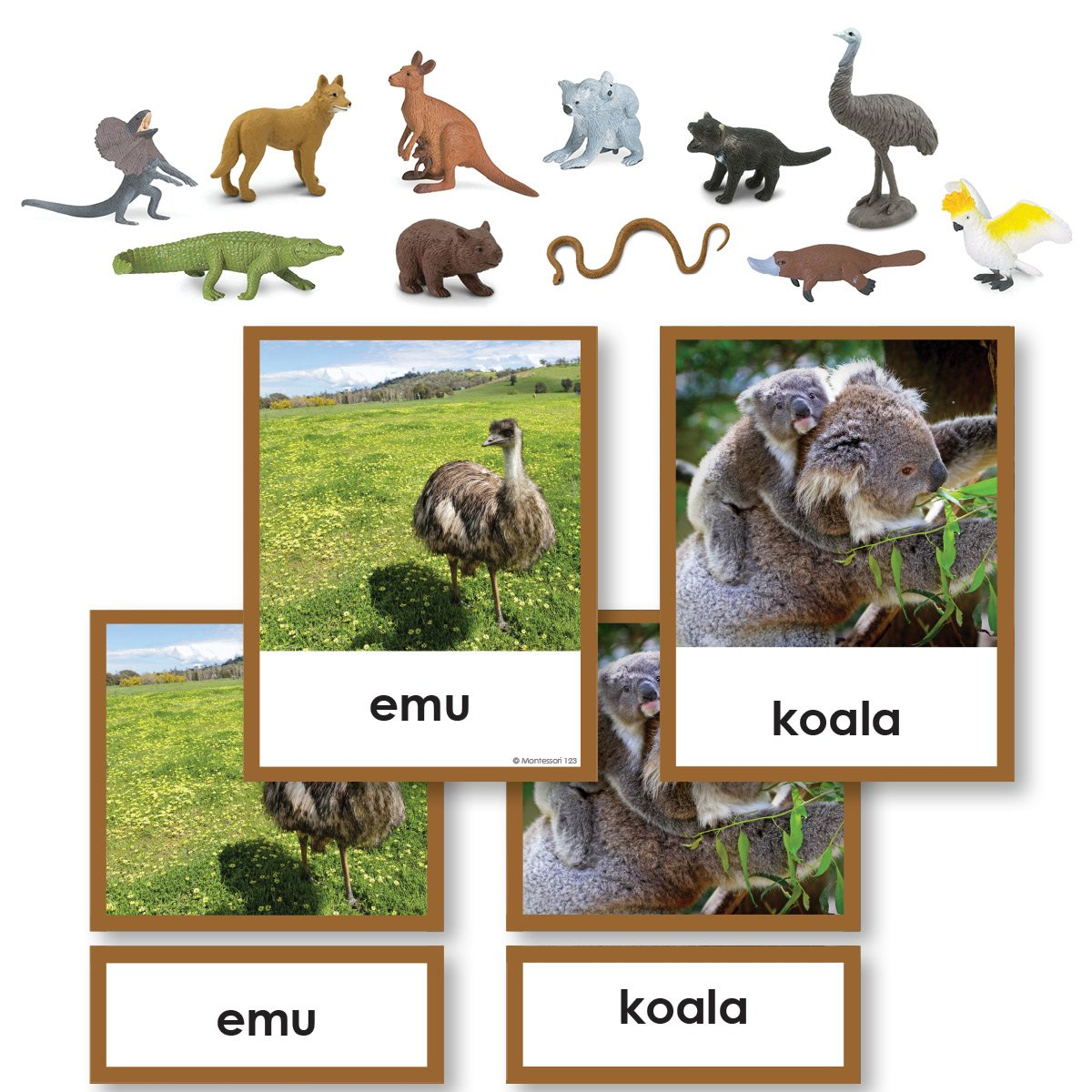 Geography Material-Study Of World Geography - Geography 3-Part Cards With Objects For Australia/ Oceania