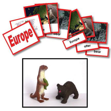 Geography Material-Study Of World Geography - Geography 3-Part Cards With Objects For Europe