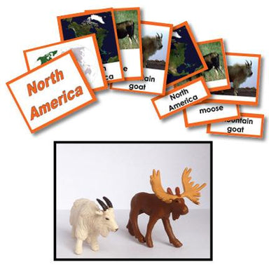Geography Material-Study Of World Geography - Geography 3-Part Cards With Objects For North America