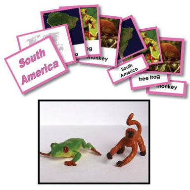Geography Material-Study Of World Geography - Geography 3-Part Cards With Objects For South America