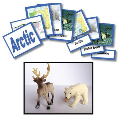 Geography Material-Study Of World Geography - Geography 3-Part Cards With Objects For The Arctic