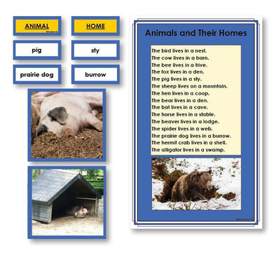 Language Arts-Vocabulary, Spelling & Editing - Animals And Their Homes Vocabulary Sorting Cards With Photographs