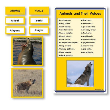 Language Arts-Vocabulary, Spelling & Editing - Animals And Their Voices Vocabulary Sorting Cards With Photographs