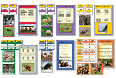 Language Arts-Vocabulary, Spelling & Editing - Complete Collection Of Animal Vocabulary Sorting Cards