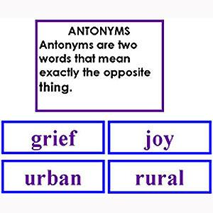 Language Arts-Word Study - Word Study: Antonyms - Matching Cards
