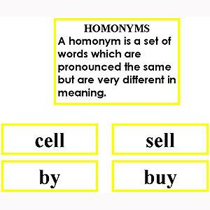 Language Arts-Word Study - Word Study: Homonyms - Matching Cards