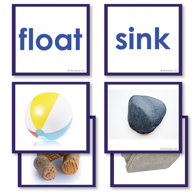 Physical Science-Physics/ Astronomy - Float Or Sink Photograph Sorting Cards